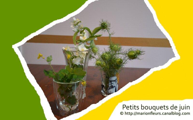 Petits bouquets de juin, marionfleurs