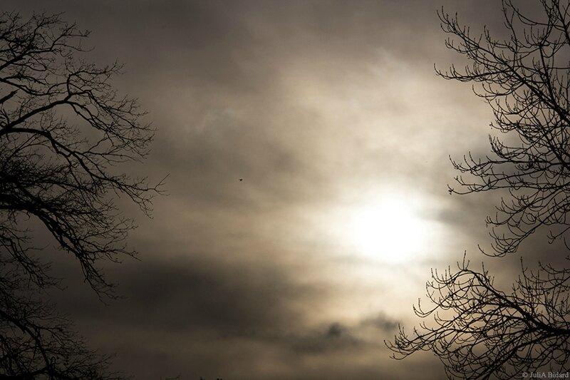 Ciel Rambouillet - fev 2016