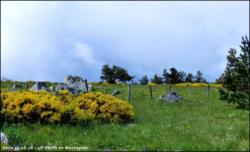 3-48-Route Montagnac