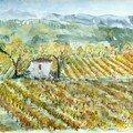 Automne 1 Dans les Vignes