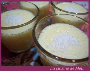 Mousse_coco