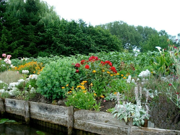 10 Les Hortillonages d'Amiens