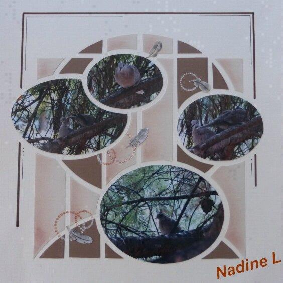 Nadine L
