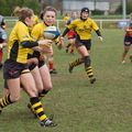 66IMG_0186T