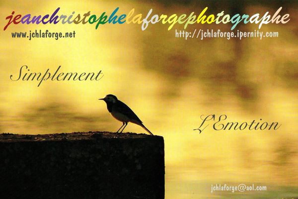 Carte de photographe jcl (1)