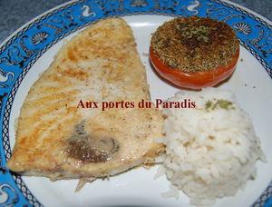 requin_et_tomate_a_la_provencale_009