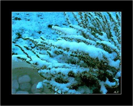 neige2M