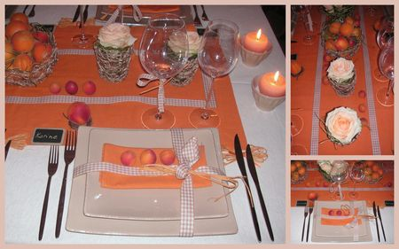 2009_07_07_table_abricots1