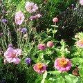 jchere florale