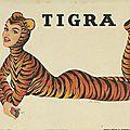 Fumez tigra