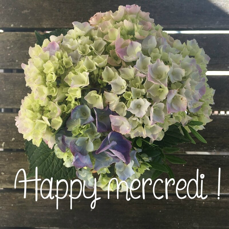 Happy Mercredi3