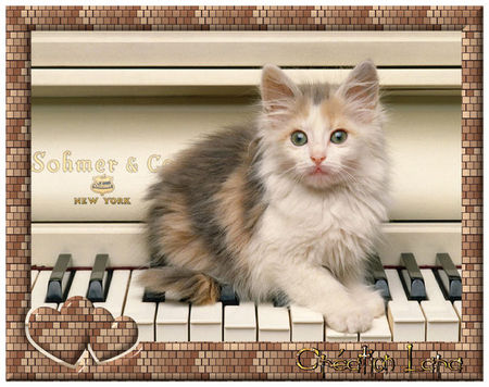 chat_piano