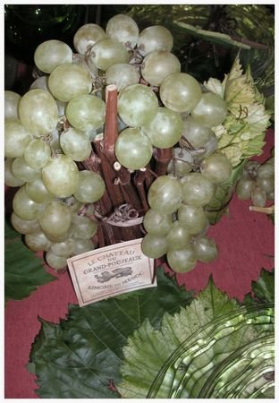2009_10_04_graines_de_vendanges4