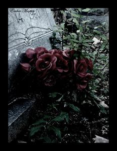 Rose_on_the_grave_by_Phantom_shilouette