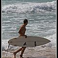 surfer17