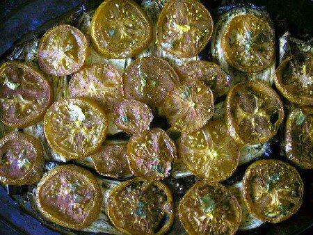 gratin_aubergines_tomates_boeuf_sauce1