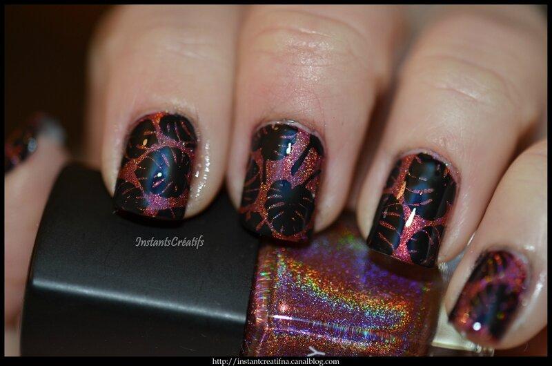 DSC_7051blog