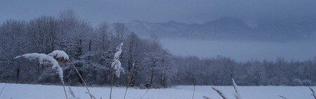 Photos_neige__paysages__013