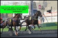 Master Grand National du Trot Paris-Turf 6 decembre 2015,arrivée,copie blog,©Yoshimi-Paris Photographie,I7D_6612 (6)