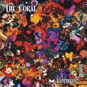 the_coral_butterfly_house