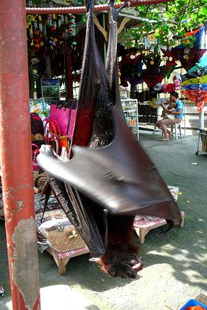 Singapour___Cambodge___Bali_416_