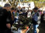 Troc aux plantes de Néoules - Octobre 2017 (17)