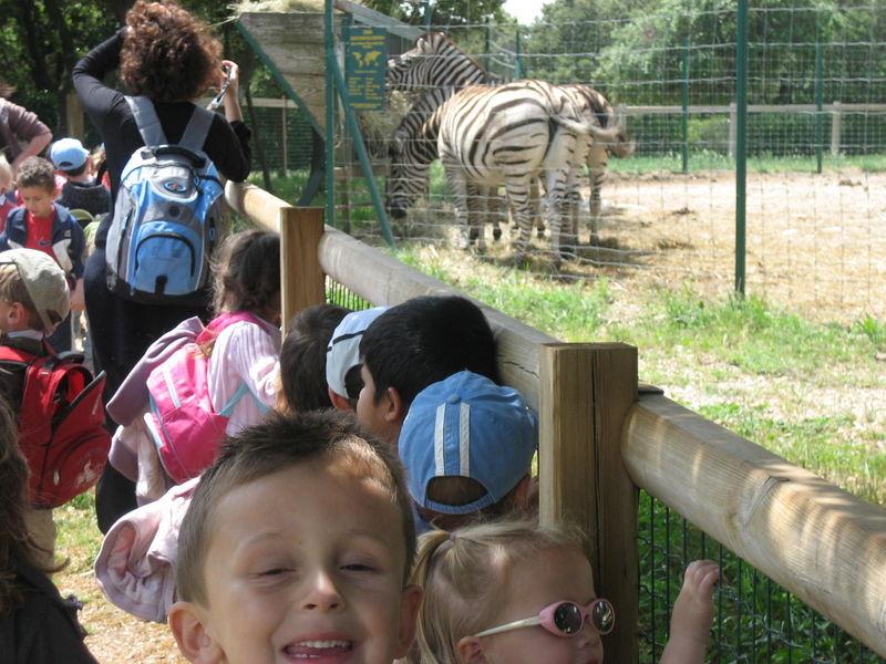 zoo 055