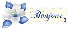bonjour_bleu