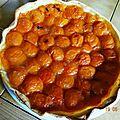 Ma tarte à l'abricot!