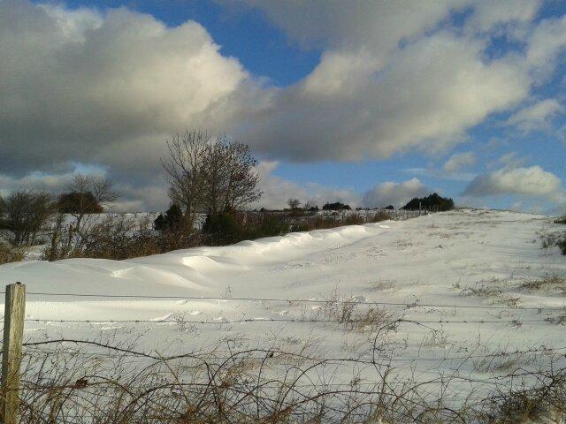 La montagne ardéchoise : Plateau du Coiron à 10 kms !