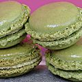 MACARONS au th Matcha