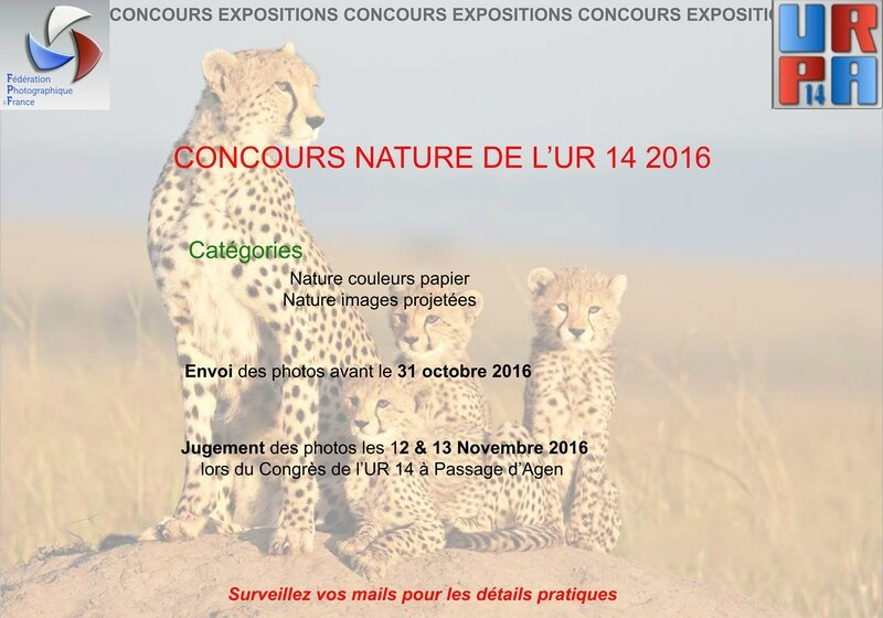Concours nature blog