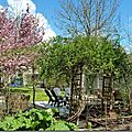 Windows-Live-Writer/Joli-printemps-au-jardin-_601C/20170402_133713_thumb