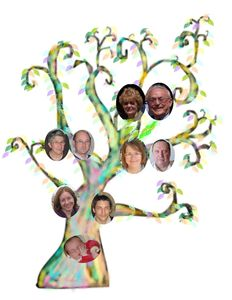 arbre_photos