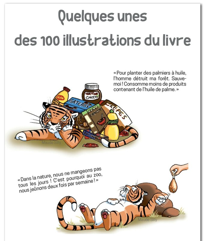 livre_enfant_animaux_beauval_maude_silly5A
