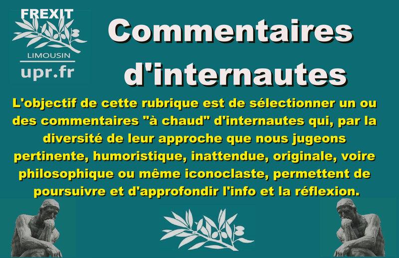 OUTIL COMMENTAIRES D INTERNAUTES