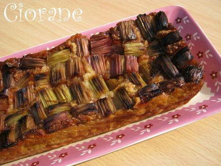 pudding-rhubarbe