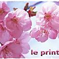 Assoula°mars: haïkus du printemps