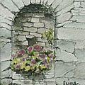 Journée portes ouvertes... les aquarelles et les dessins