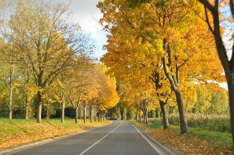 automne à villepreux3