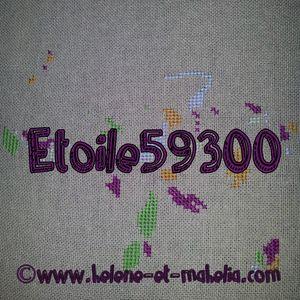 etoile59300_salaout_5