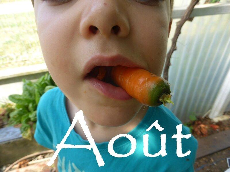 13-carottes (7) - Copie