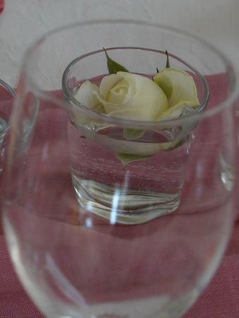 Rose13
