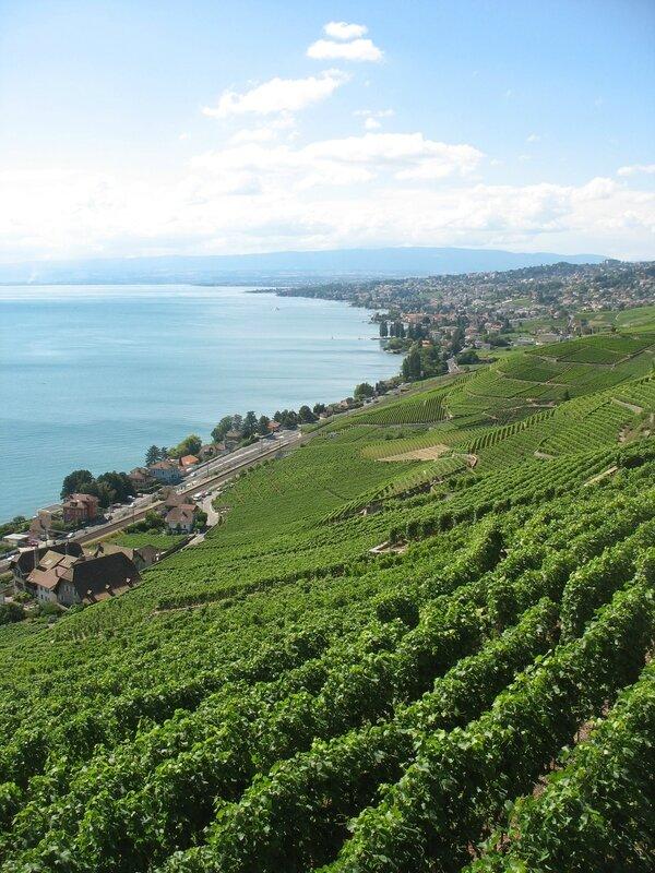 Bourg-en-Lavaux, vignes et lac Leman