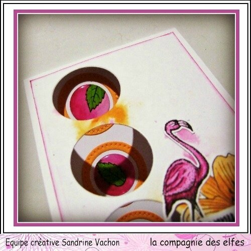 Sandrine VACHON janvier dt LCDE (2)