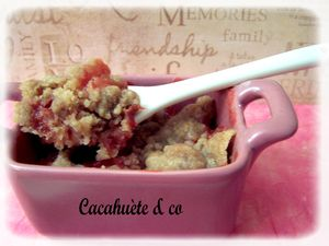 crumble_fraise_rhubarbe_aux_speculoos
