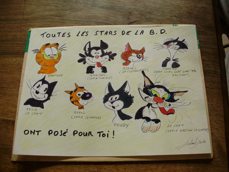 les chats de Mr Zolie cagouille