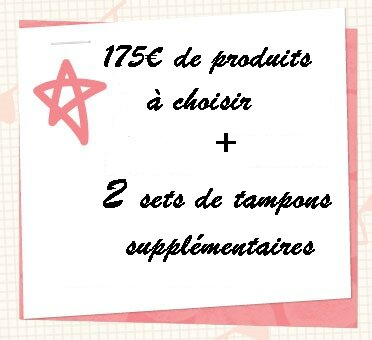 offre démonstratrice Stampin'up bis