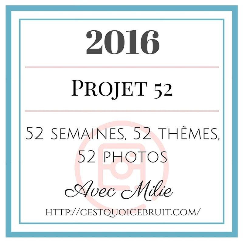 logo projet 52 2016