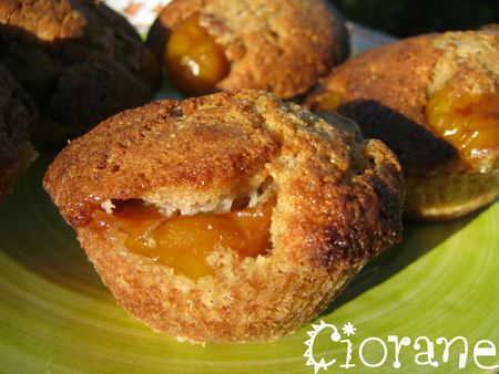 muffin-chataigne-mirabelles